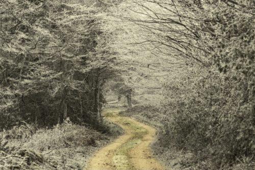 Où se perdent les chemins …