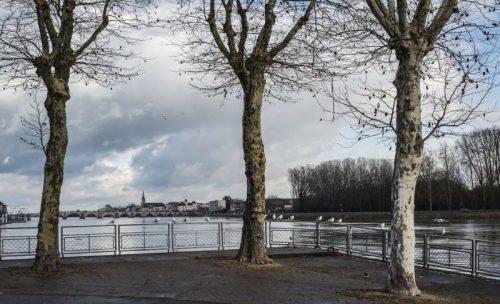 Grisaille sur la Saône