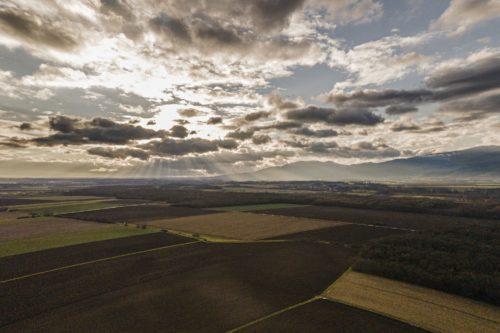 Droneries alsaciennes