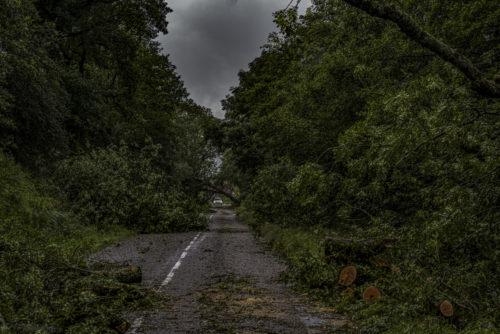 La tempête